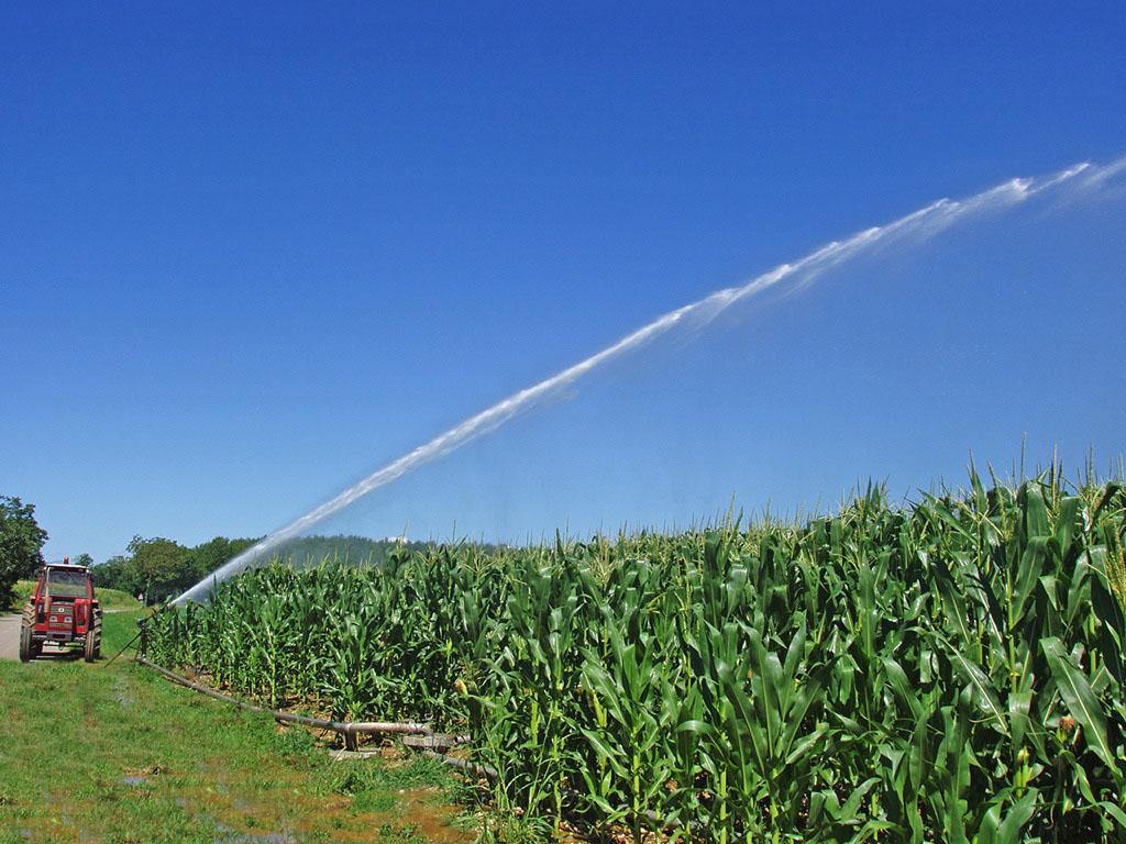 Irrigazione – Comunicato Stampa n. 6 del 24/10/2016